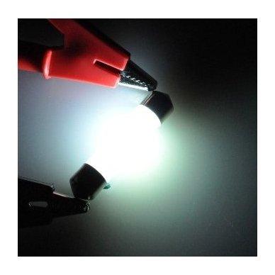3D LED lemputė C5W / F10 36mm 12 SMD X-treme balta 6000K 3