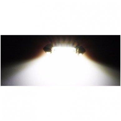 CREE LED C5W/F10 3LED CAN BUS lemputė 39mm 4