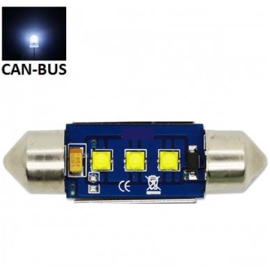 CREE LED C5W/F10 3LED CAN BUS lemputė 39mm