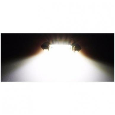 CREE LED C5W/F10 3LED CAN BUS lemputė 36mm 2
