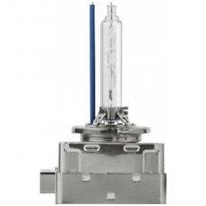 D1S 6000K xenon COOL BLUE PREMIUM lemputė E11 į originalias xenon sistemas