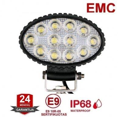EMC LED plataus švietimo darbo žibintas 36W, 10-30V, 12 LED