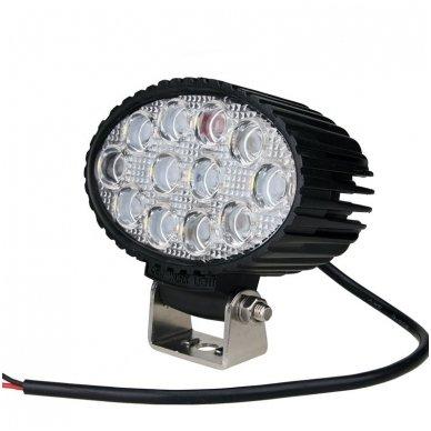 EMC LED plataus švietimo darbo žibintas 36W, 10-30V, 12 LED 8