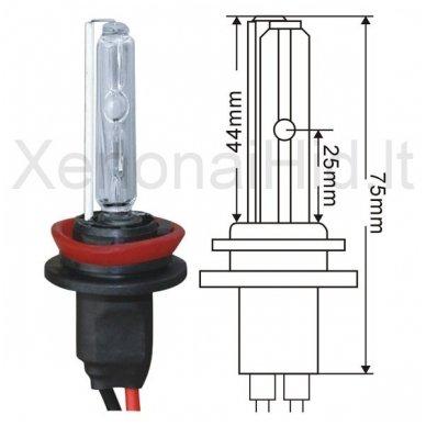 H8, 35W, 6000K xenon lemputė