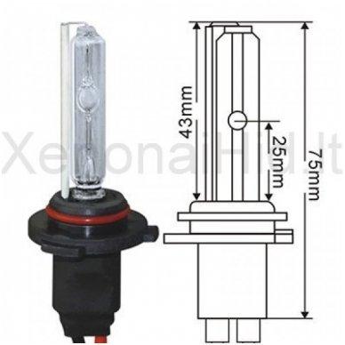 HB4 / 9006, 35W, 6000K xenon lemputė
