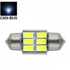 LED CAN BUS lemputė F10 / C5W 31mm - 6 LED