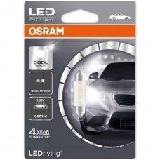 C5W/F10 OSRAM Cool White LED, 36mm, 6000K, 12V 0,5W, 6436CW-01B, 4052899358096