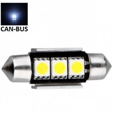 Led CAN BUS lemputė F10 / C5W 36mm - 3 LED