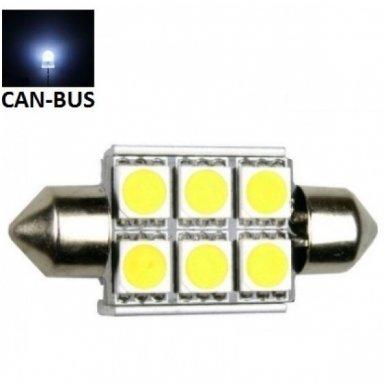 Led CAN BUS lemputė F10 / C5W 36mm - 6 LED