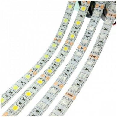 LED juosta balta 12V 14.4W/m LED5050 SMD hermetiška 2