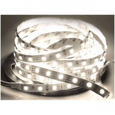 LED juosta balta 12V 14.4W/m LED5050 SMD hermetiška 4