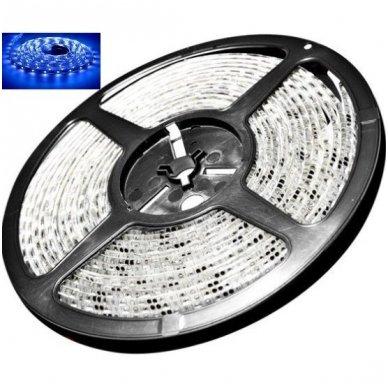 LED juosta mėlyna 12V 14.4W/m LED5050 SMD hermetiška