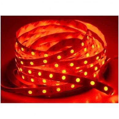 LED juosta raudona 12V 14.4W/m LED5050 SMD hermetiška 4
