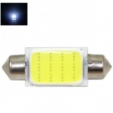 Led lemputė F10 / C5W 39mm - 1 COB LED