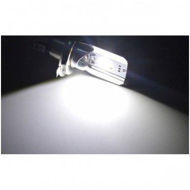 LED lemputė M2S BA20D 6W 800LM 12-24V motociklams / keturračiams / sunkvežimių 7